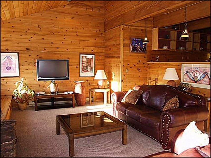 Great Room - Best Views in Snowmass - Quiet Location (1365) - Snowmass Village - rentals