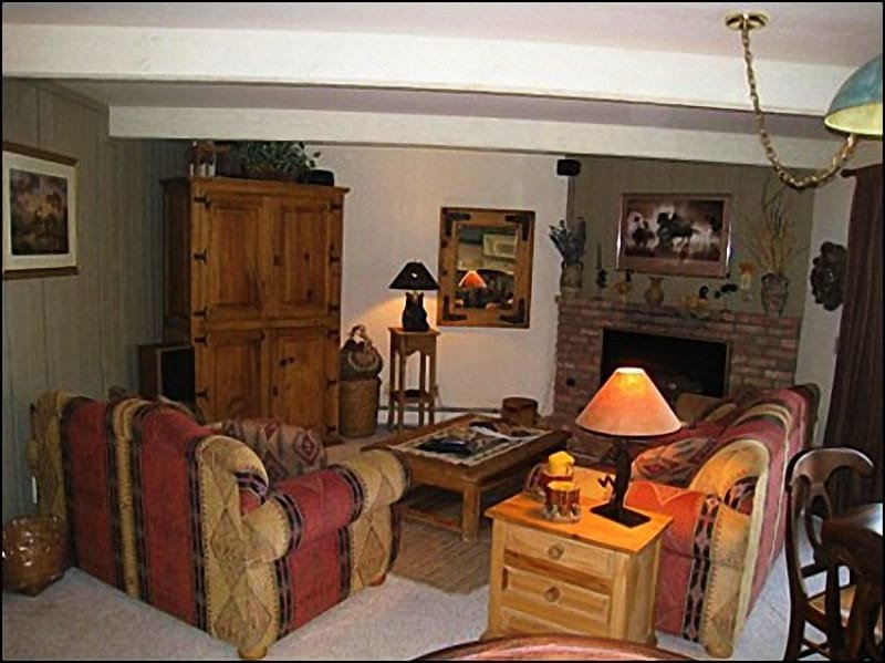 Cozy Living Room with fireplace - Walking Distance to Base Village - Great Value! (2488) - Snowmass Village - rentals