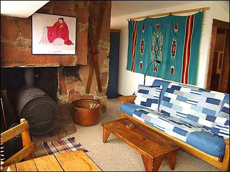 Living room with Pot Belly Stove - Rustic Mountain Cabin - A Room with a View! (2626) - Aspen - rentals