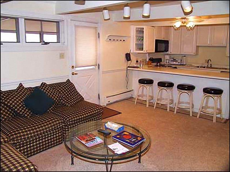 Living room area - Immaculate 2 bedroom - Walk to lifts (3579) - Aspen - rentals