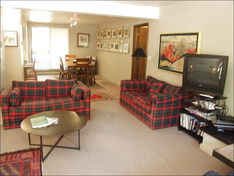 Open Living Area - Quiet River Location - Walk to Restaurants and Shops (4430) - Aspen - rentals