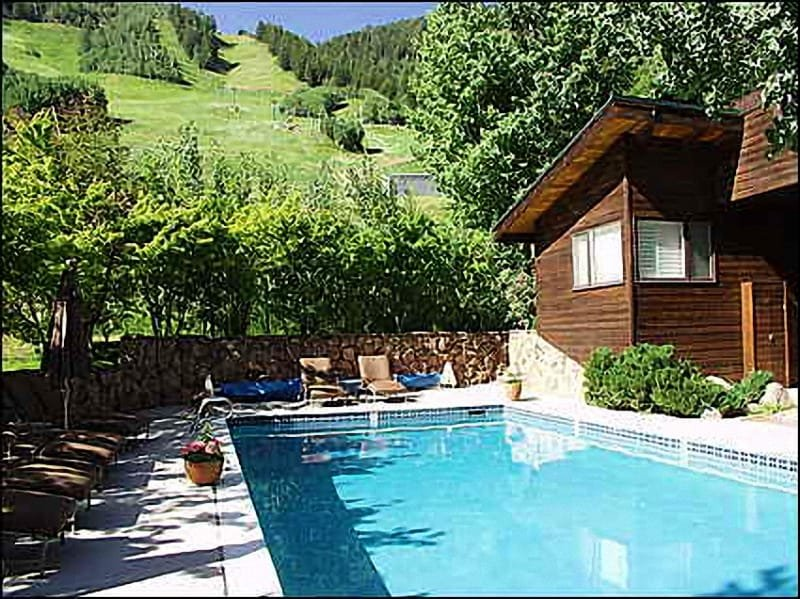 Slopeside Pool - Ski-in/Ski-out - Convenience! Location! (8114) - Aspen - rentals