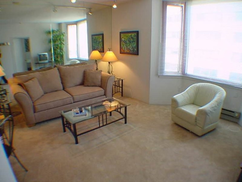 SPOTLESS AND VIBRANT FURNISHED 1 BEDROOM 1 BATHROOM CONDOMINIUM - Image 1 - San Francisco - rentals