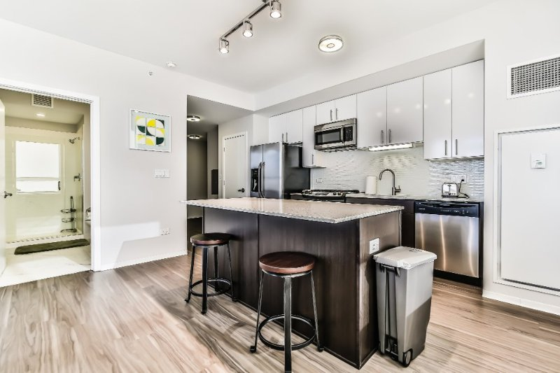 Sleek and Modern 1 Bedroom apartment in Chicago - Amazing View - Image 1 - Chicago - rentals
