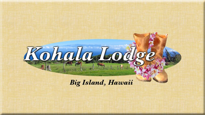 Kohala Lodge - Great private or family retreat... - Image 1 - Hawi - rentals
