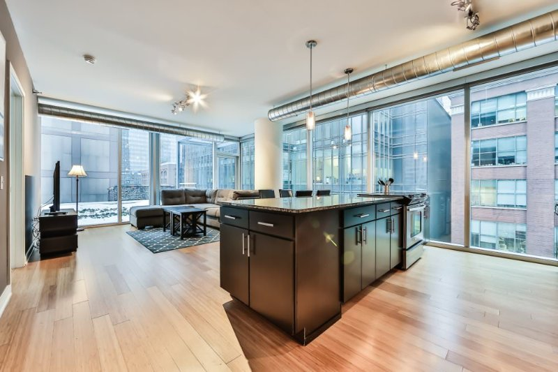 Gorgeous 2 Bedroom 2 Bathroom Apartment in River North, Chicago - Great Amenities - Image 1 - Chicago - rentals