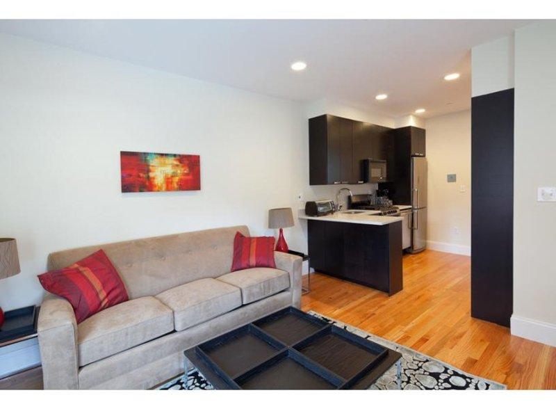 BEAUTIFUL AND CLEAN 1 BEDROOM, 1 BATHROOM APARTMENT - Image 1 - Boston - rentals