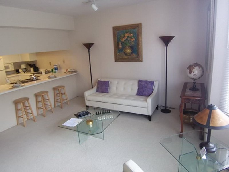 GORGEOUS AND MODERN 1 BED 1 BATH APARTMENT - Image 1 - San Francisco - rentals