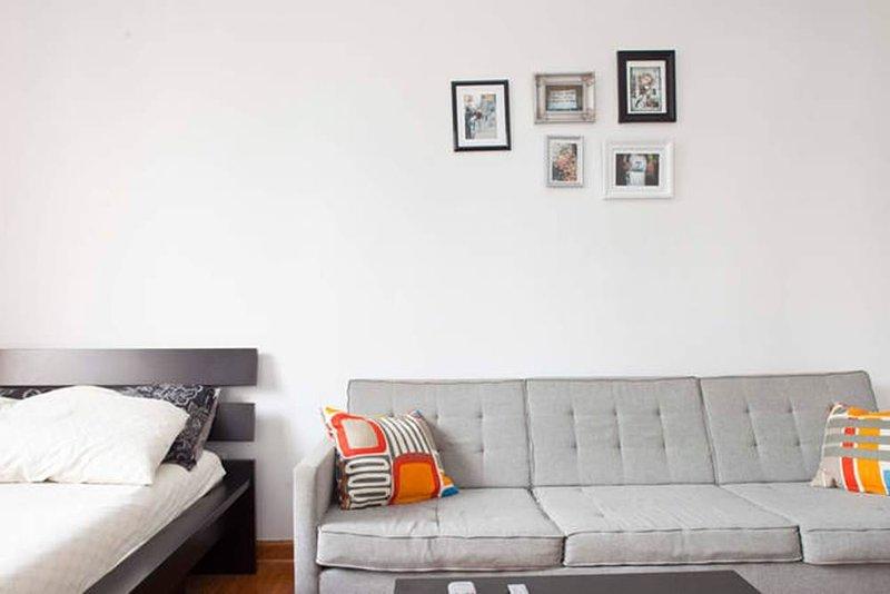 STUNNING STUDIO APARTMENT - Image 1 - Manhattan - rentals