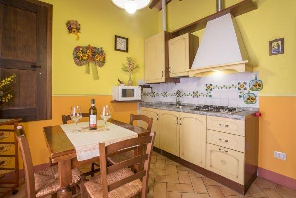 Sole - Image 1 - San Gimignano - rentals