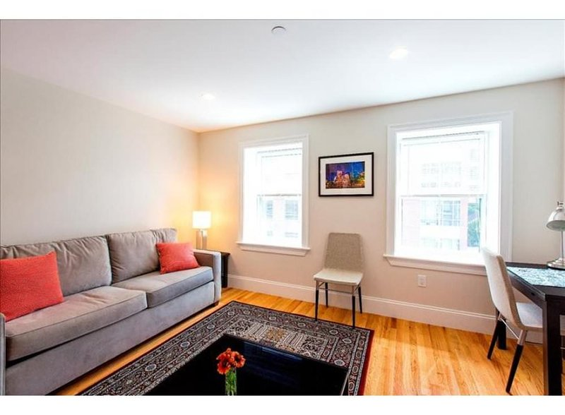 ELEGANT AND SPACIOUS 1 BEDROOM, 1 BATHROOM APARTMENT - Image 1 - Boston - rentals