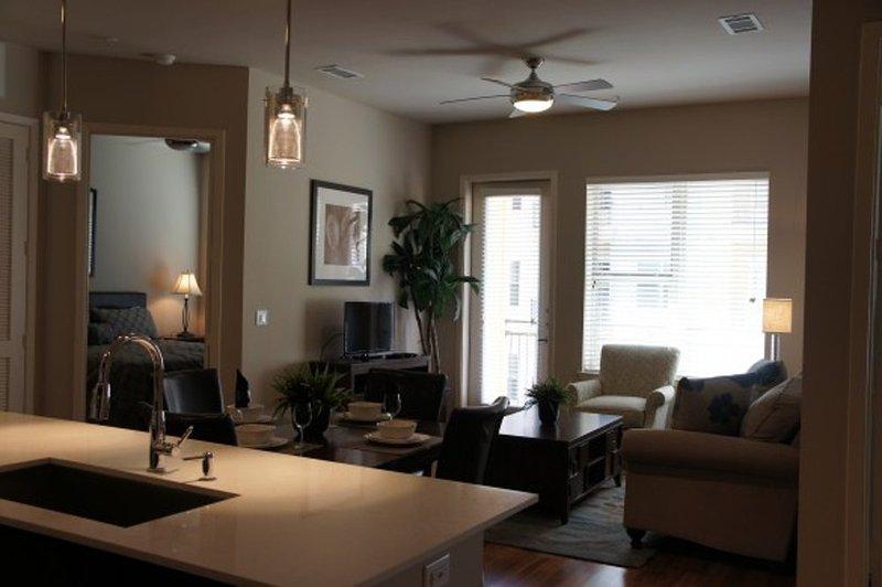 Thoughtfully-Designed Apartment - Image 1 - Houston - rentals