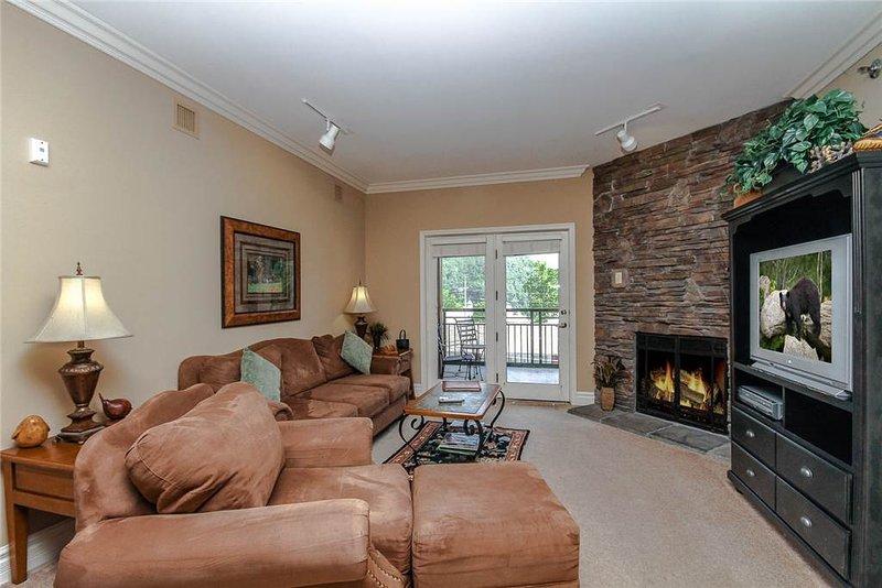 Baskins Creek 305 - Image 1 - Gatlinburg - rentals