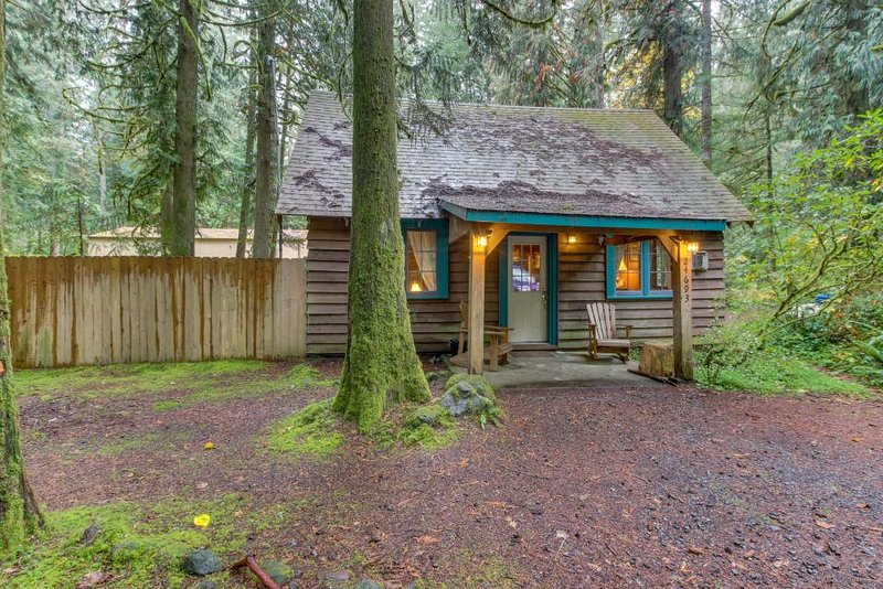 Quintessential dog-friendly cabin in the woods, within short walk of the river! - Image 1 - Rhododendron - rentals