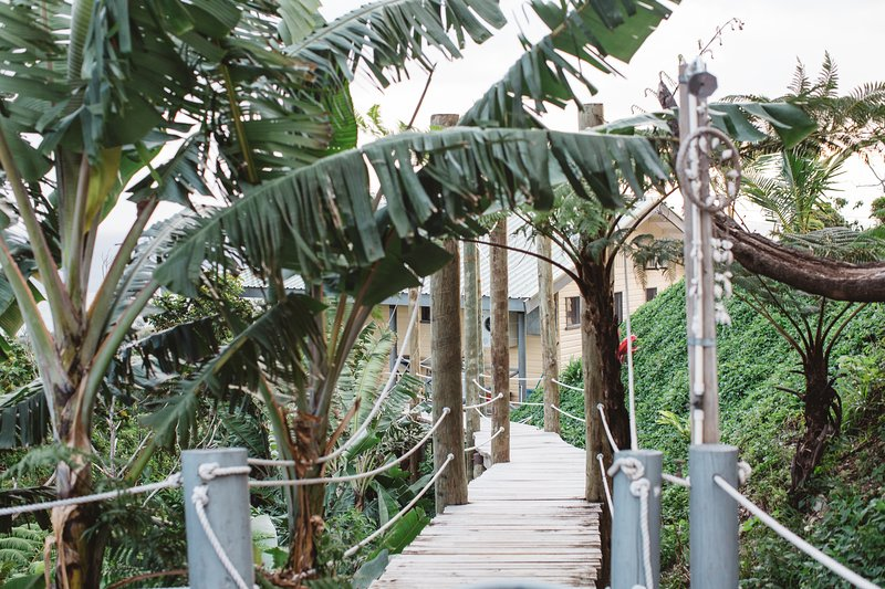 Your tree top ocean view walking bridge to and from plunge pool  - Paradise Fiji Tree House - Sigatoka - rentals