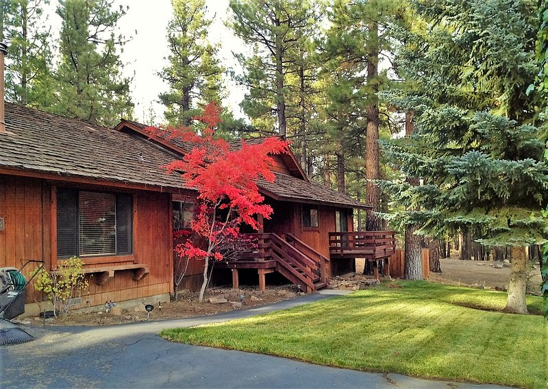 Luxurious Reno/Lake Tahoe Home (Hot Tub & Sauna) - Image 1 - Reno - rentals