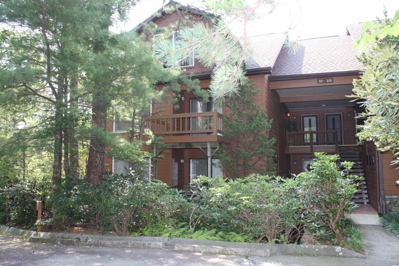 North Carolina Mountain Retreat - Image 1 - Lake Toxaway - rentals