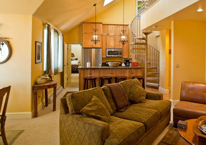 Blue Mesa Lodge #40B - Image 1 - Telluride - rentals
