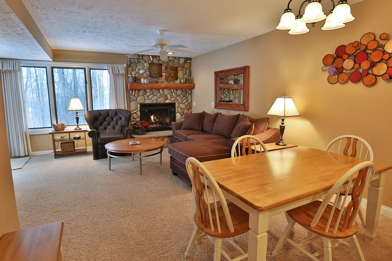 Beautiful 2 bedroom 2 bath condos w/kitchen, fireplace, washer and dryer - Trout Creek Condo Vacation Rentals -Harbor Springs - Harbor Springs - rentals