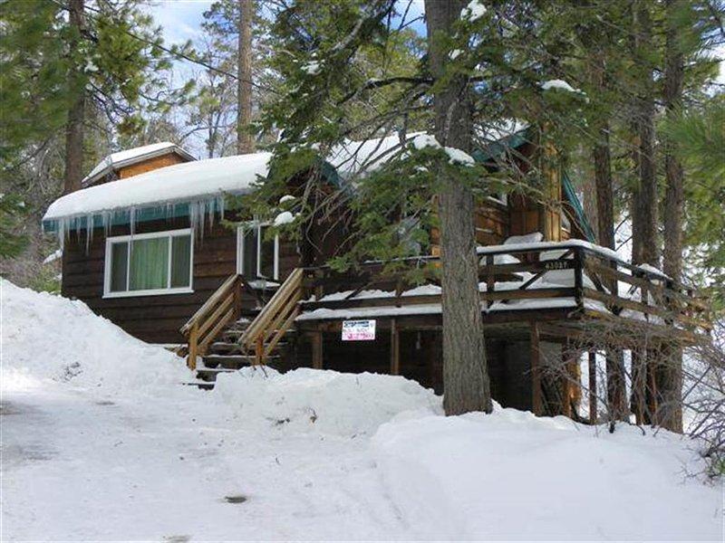 Grizzly Bear - Image 1 - City of Big Bear Lake - rentals