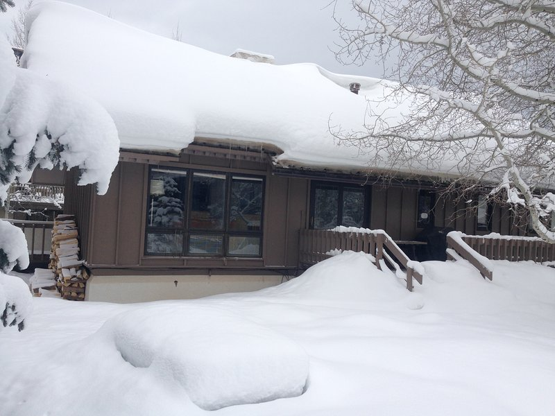 Chalet in winter - Great Location! Lionshead Mountain Home, Vail, CO - Vail - rentals