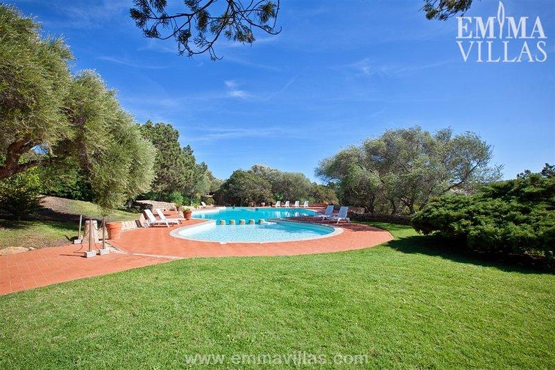 Villa Zeus 6 - Image 1 - Liscia di Vacca - rentals