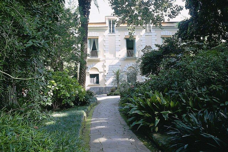 Appartamento Isabella - Image 1 - Sorrento - rentals