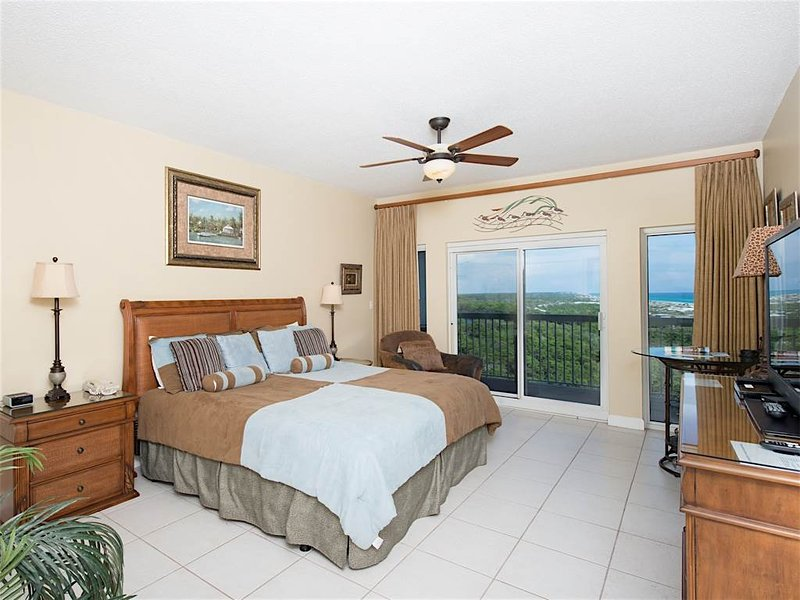 TOPS'L Summit A1006 - Image 1 - Miramar Beach - rentals