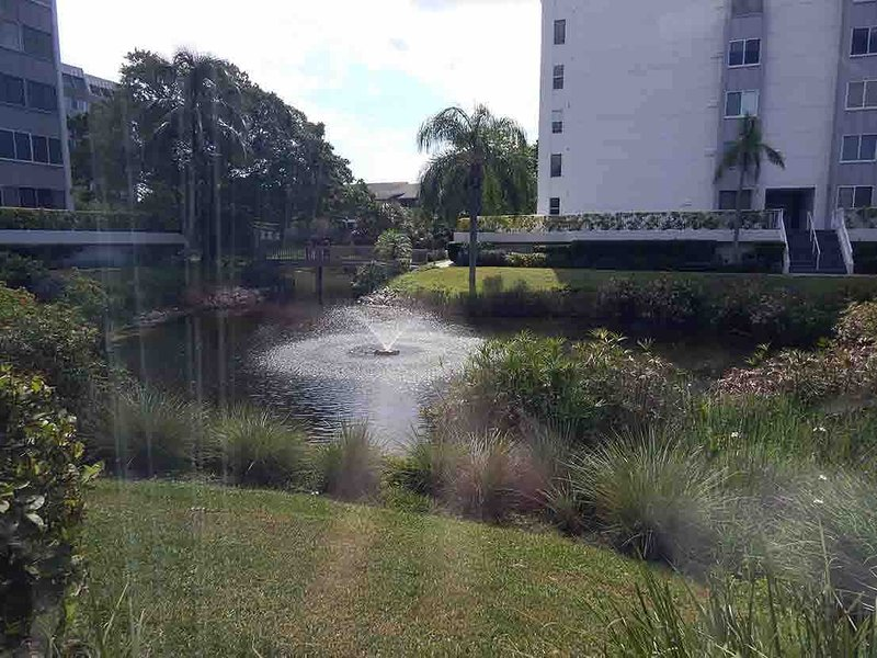 View - Gulfside Small Garden Unit C - Siesta Key - rentals