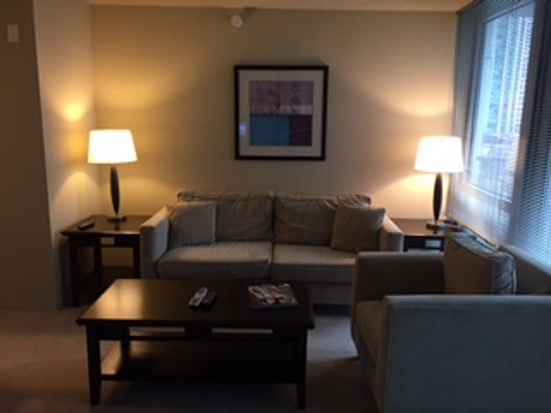 Furnished 1-Bedroom Apartment at East South Water Street & N Field Blvd Chicago - Image 1 - Chicago - rentals