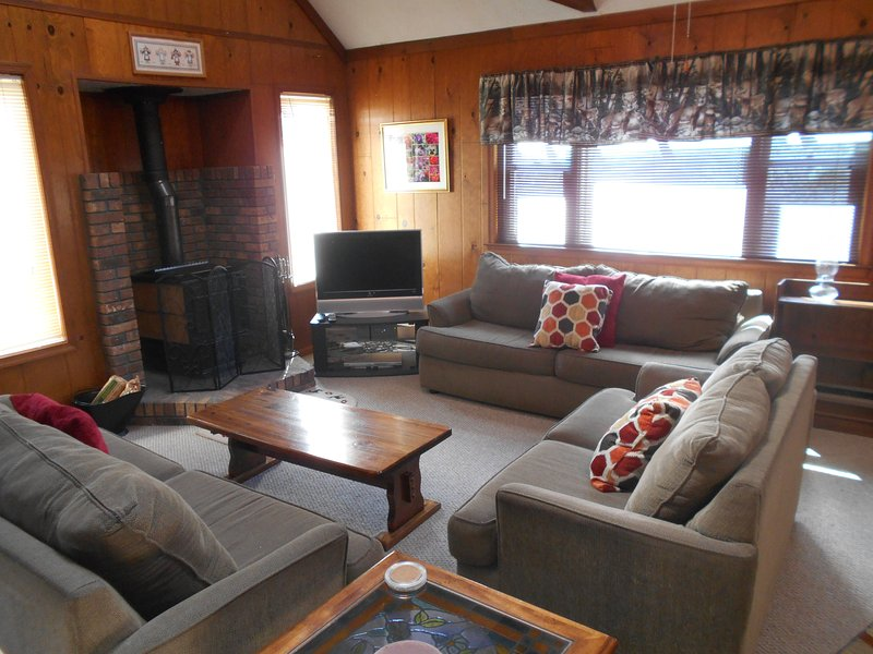 living room with wood burning stove and flat screen tv - Near Lake,Skiing,& Water Parks Free WIFI cable - Albrightsville - rentals