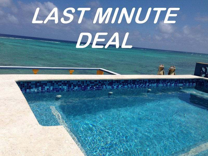 6,000 Square Foot Villa with Roof Pool, INCLUDES COOK, 6 BR, Regular Pool & More - LOW RATES VILLA Includes Cook, 2 Pools, WiFi, More - Tulum - rentals