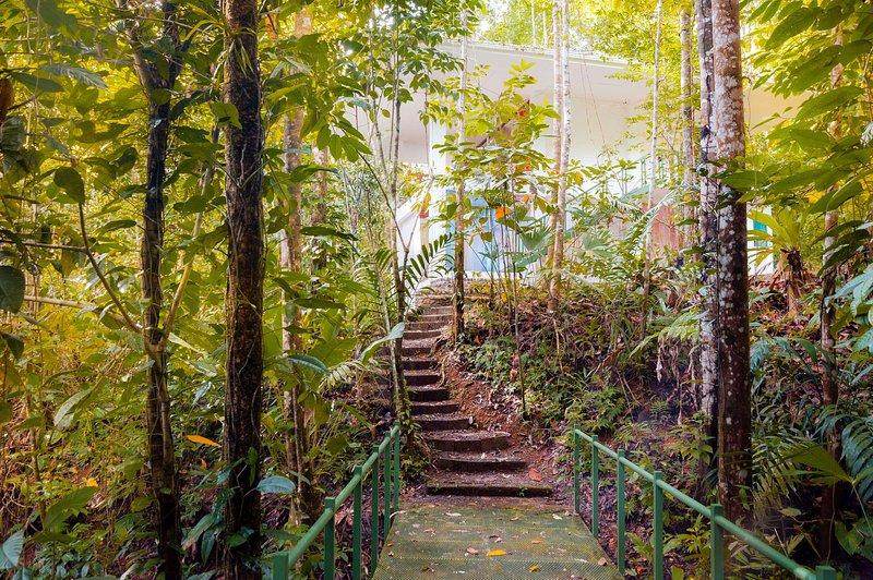 Colibrí House - Image 1 - Portalon - rentals