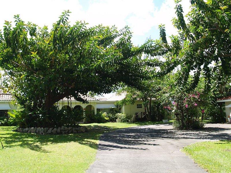 Westerlee Villa - Image 1 - The Garden - rentals