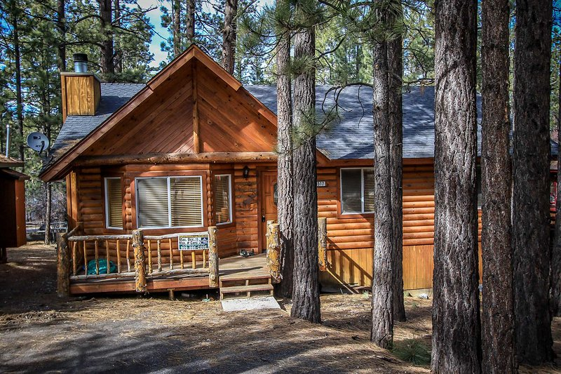 1182-Sugar Pine - Image 1 - Big Bear City - rentals