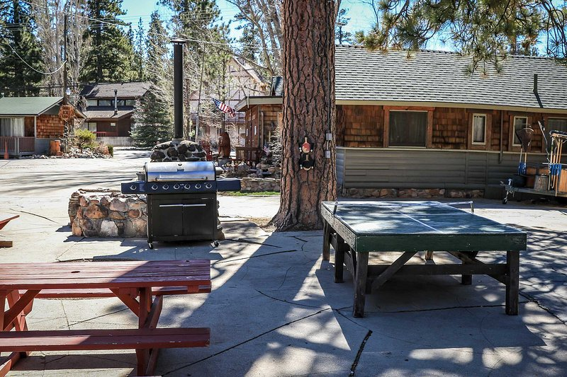 0107-Lonepine ~ RA2320 - Image 1 - Big Bear Lake - rentals