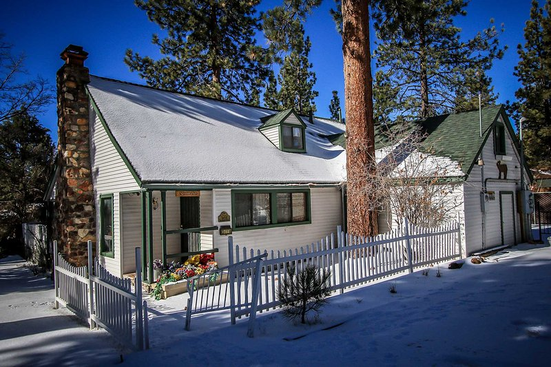 147-Moosehead I - Image 1 - Big Bear Lake - rentals
