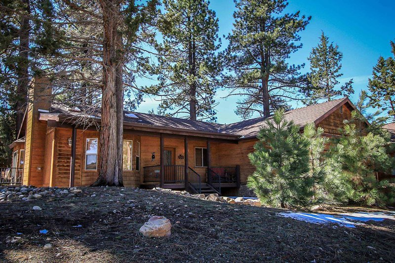 1156-Can't Bear to Leave - Image 1 - Big Bear Lake - rentals