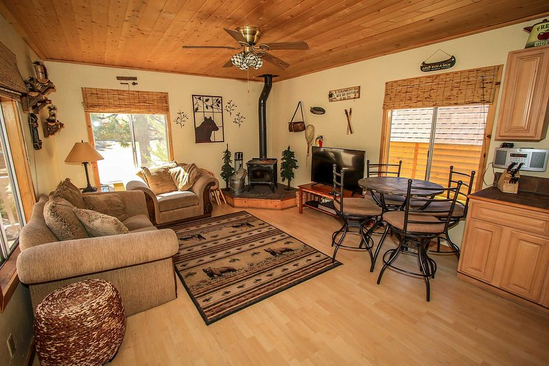 1079- Little Bear - Image 1 - Big Bear Lake - rentals