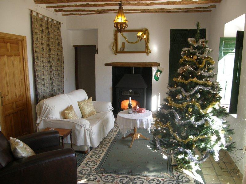 Christmas and New Year at Cortijo Romero - Cortijo Romero, exclusive use pool, Orce - Orce - rentals
