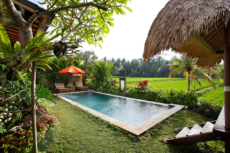 Mature gardens with orchids and flowers throughout - Oct-Dec Very Special Rate Luxury 3BR Villa Santana - Ubud - rentals
