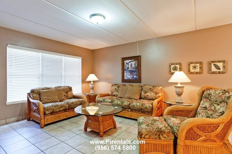 Beach View 210 - Image 1 - South Padre Island - rentals