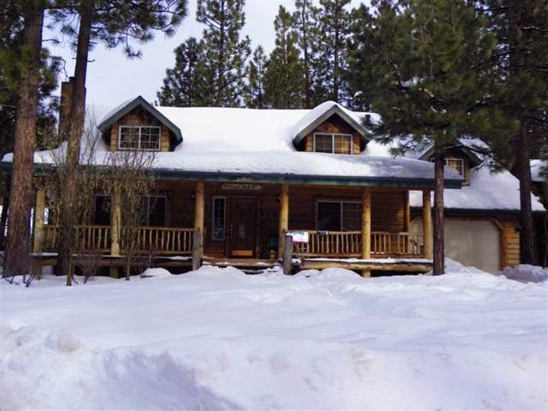 Abe's Cool Cabin - Image 1 - City of Big Bear Lake - rentals