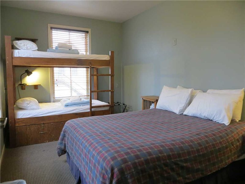 Private Family Room, Sleeps 4 - Image 1 - Crested Butte - rentals