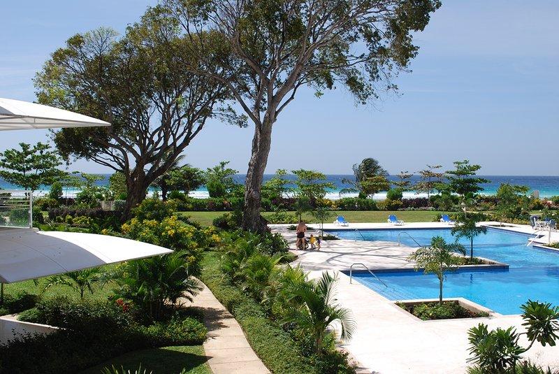 - Palm Beach Condos 206 - Hastings - rentals