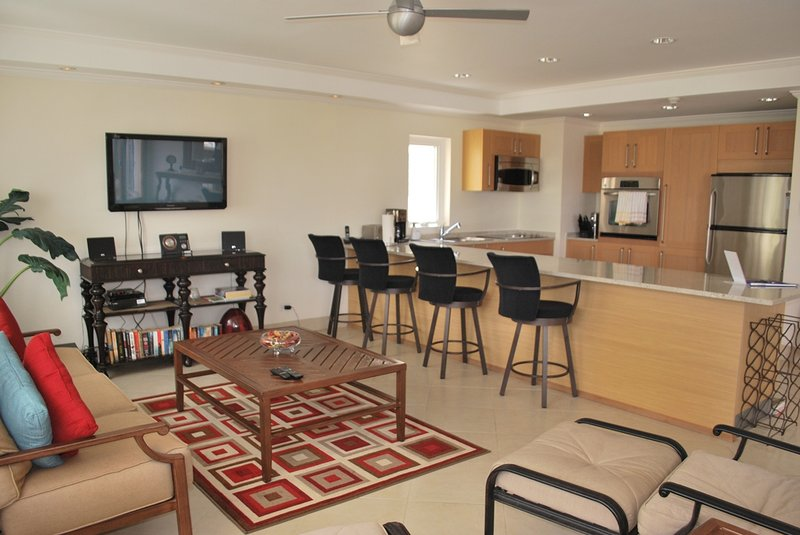 Palm Beach Condos 509 - Image 1 - Hastings - rentals