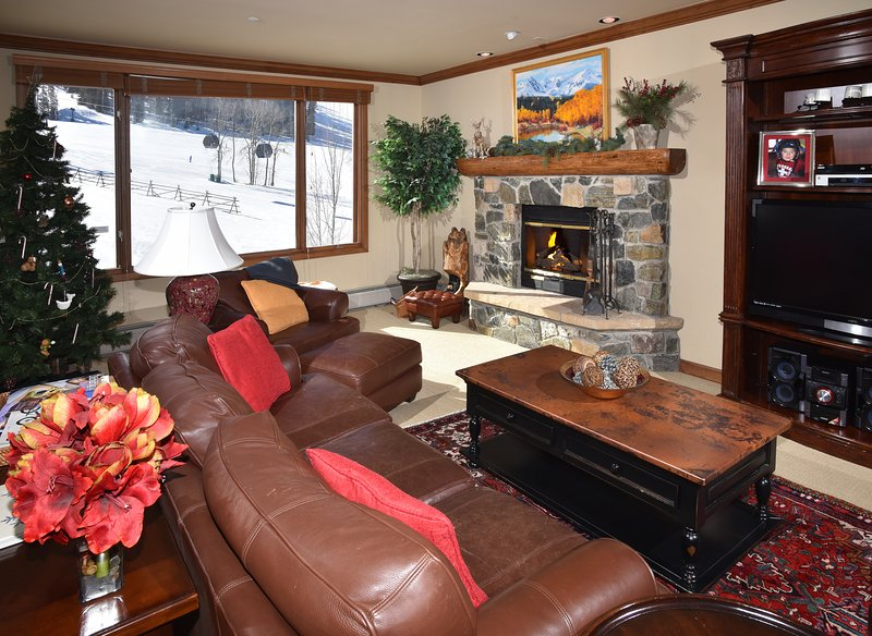 50% OFF FOR OPEN DATES IN FEBRUARY! Ski-In/Ski-Out With Views To Die For - Image 1 - Beaver Creek - rentals
