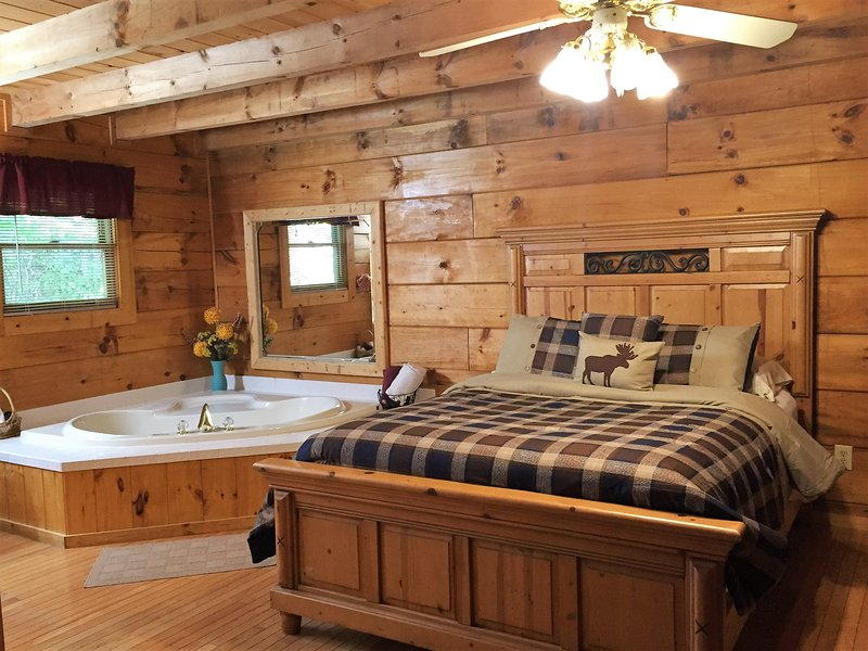Cozy, romantic BearFoot 2. Best location around! - Image 1 - Townsend - rentals