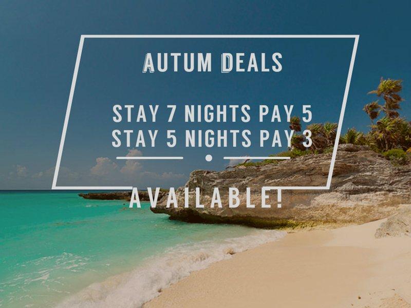 Amazing Condo, Best Price, Playa Del Carmen Mexico - Image 1 - Playa del Carmen - rentals