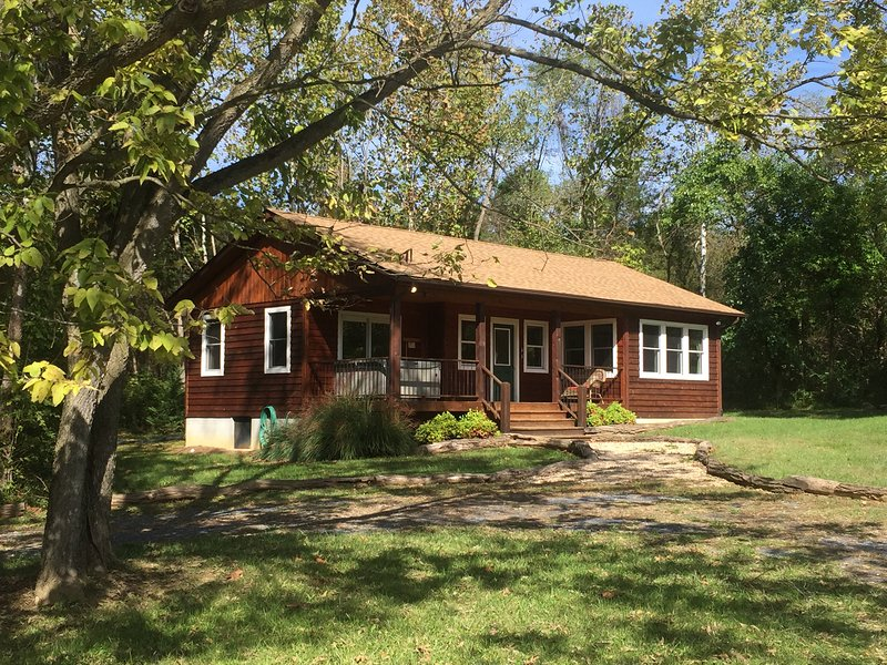 Deluxe 1 BR Riverfront Cabin with Hot Tub on 54 River Front Acres - Image 1 - Rileyville - rentals